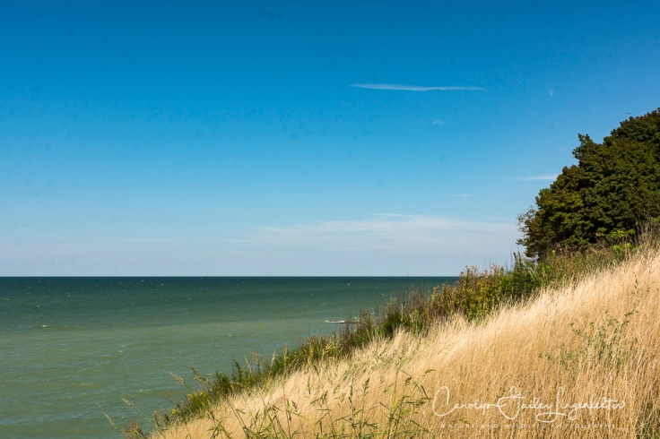 2018_08_31__Lake Erie Bluffs_0037