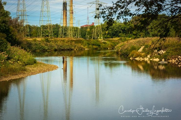 2018_10_05__Chagrin River Park-Autumn 2018_0012-2