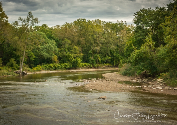 2018_10_05__Chagrin River Park-Autumn 2018_0057