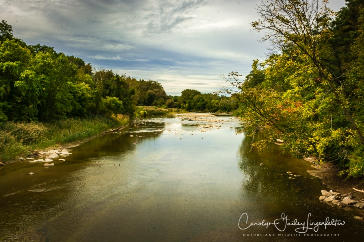 2018_10_05__Chagrin River Park-Autumn 2018_0060-3