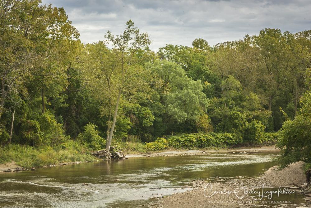 2018_10_05__Chagrin River Park-Autumn 2018_0064