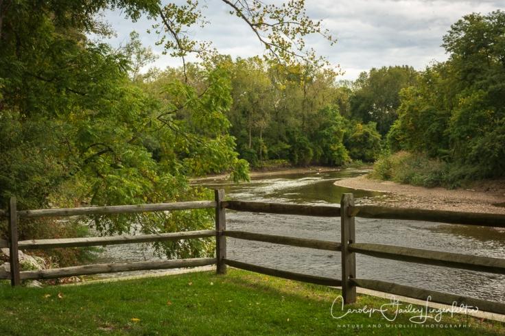 2018_10_05__Chagrin River Park-Autumn 2018_0066