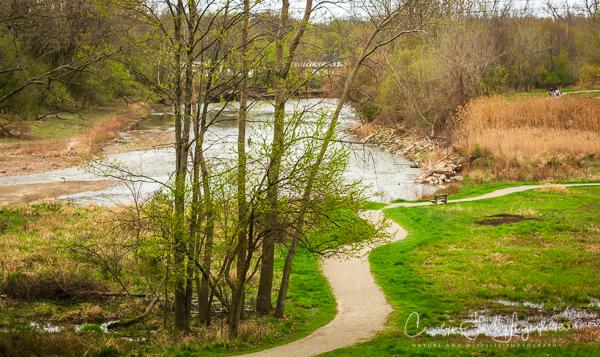 2019_04_24__Spring trailwalking_0432