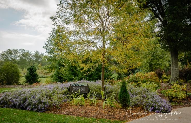 2019_10_01__Holden Arboretum_0018