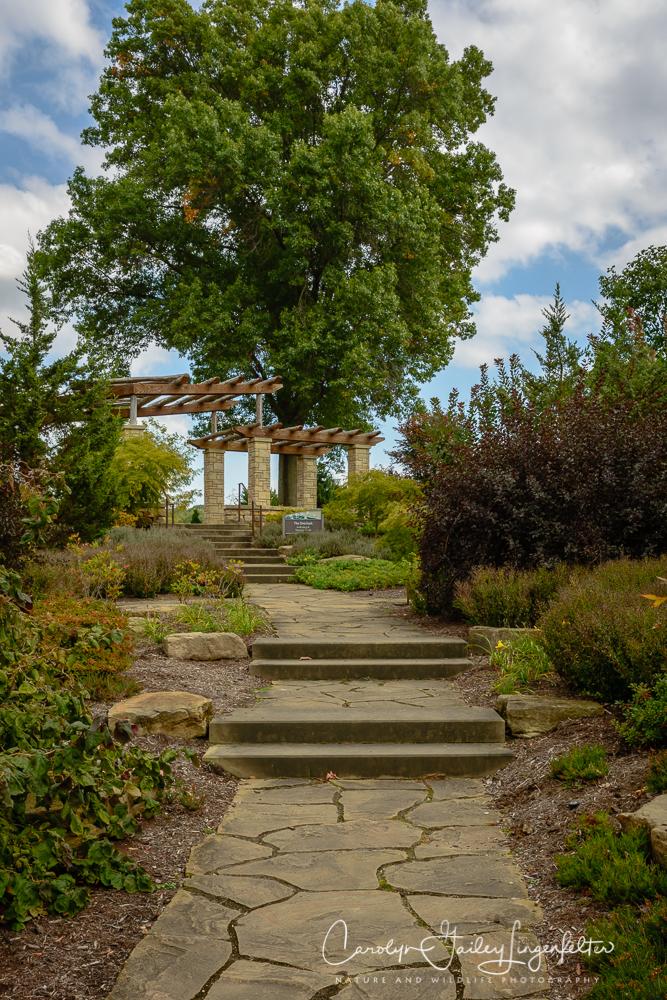 2019_10_01__Holden Arboretum_0027