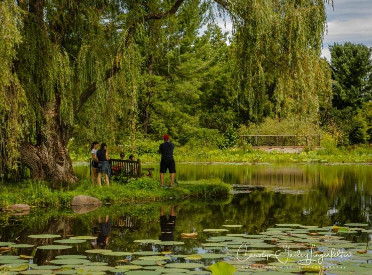 Holden Arboretum_08_12_0035