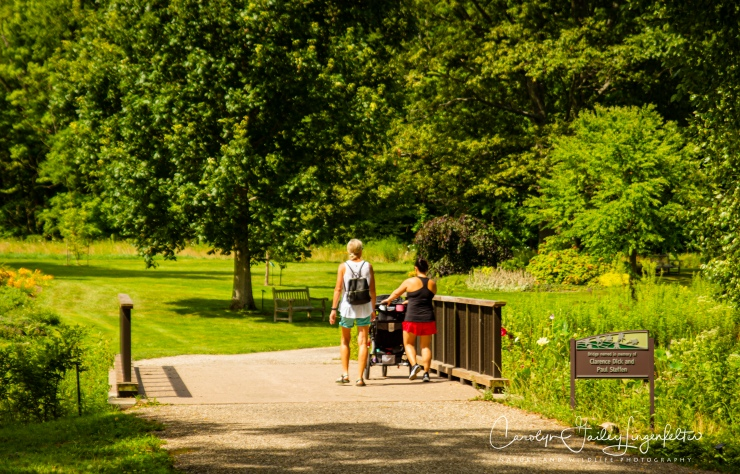 Holden Arboretum_08_12_0049