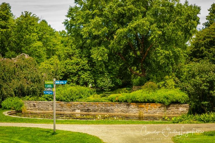 Holden Arboretum_08_12_0058